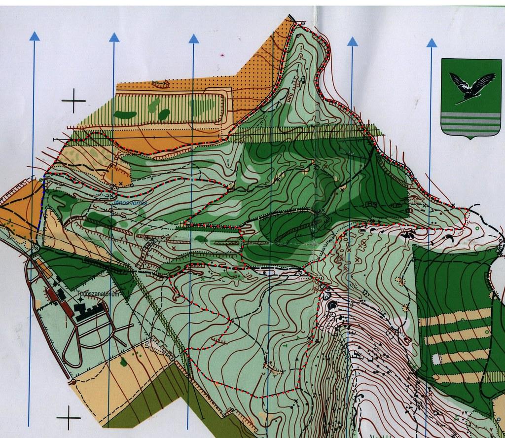 Megalódusz hegyifutó - térkép