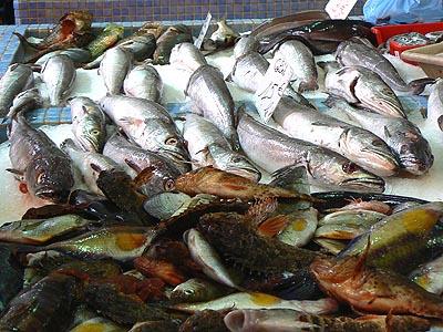 poissons Forville.jpg