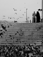Waterfront Mosque (Oberazzi) Tags: bw seagulls birds turkey searchthebest blind pigeons flight photographers istanbul mosque fv10 myfavorites faved peopleschoice newmosque monochromia abigfave anawesomeshot blindphotographers impressedbeauty superbmasterpiece diamondclassphotographer flickrdiamond queensmosque potwkkc40 favescontestwinner