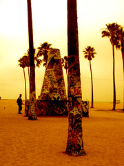 Venice Beach - Los Angeles (kobalt_max) Tags: california new york las vegas winter sun white house lake chicago max building tower beach yellow boston night train plane wow subway washington losangeles cool sand view traffic sandiego eagle lasvegas loop miami michigan flag cab taxi cleveland nevada tube flight wing broadway january rail sunny terminal casino cadillac jfk capitol american hollywood venicebeach miamibeach celtics kobalt   kobaltmax