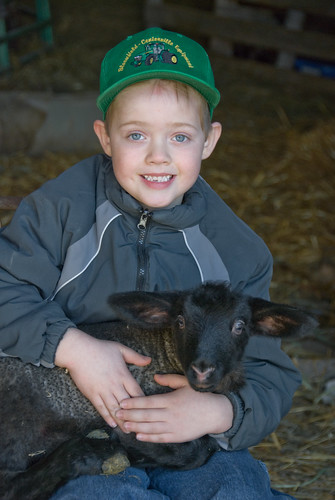 Holding the lamb