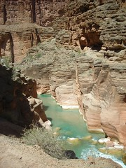 Lower Havasu Canyon