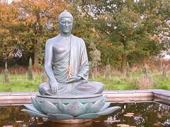 Aksobhya pond 3