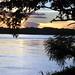 La gran cuenca del Amazonas 2/2 (Félix Rodriguez de la Fuente)