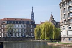 DSC_0408.JPG (esti-) Tags: strasbourg alsace estrasburgo alsacia