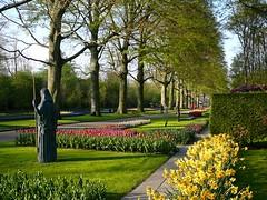Keukenhof flower park #15