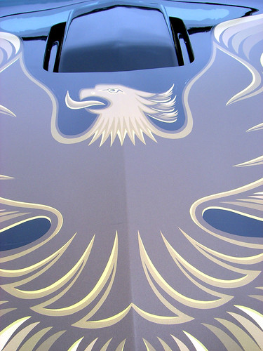 i have a 1980 pontiac ta turbo