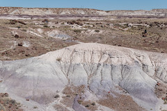 tolle Farben (sgplewka) Tags: 2016 usa petrifiedforestnp holbrook arizona us