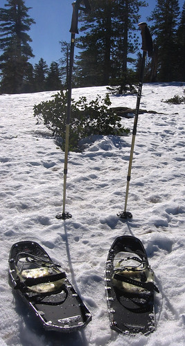 Snowshoes and poles at Yosemite National Park