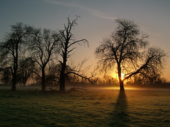 Light on a landscape (Kevin Day) Tags: light mist sunrise dawn buckinghamshire slough berkshire kevday dri goldenlight langleypark magicallight
