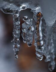 Die Myraflle - ein Naturdenkmal (arjuna_zbycho) Tags: winter water austria wasser olympus bach icicle eis niedersterreich eiszapfen wasserflle miraflle rakousko naturalmonument klamm naturdenkmal muggendorf sople