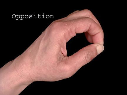 OppositionImage006_4