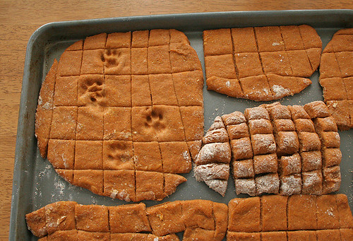 The CAT's Opinion of DOG Cookies....