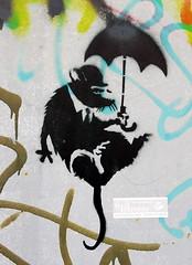 skydiving rat (Henning Onken) Tags: street streetart berlin art stencil rat sbahn ratte mitte regenschirm fallschirmspringen fallschirm sbahnbgen