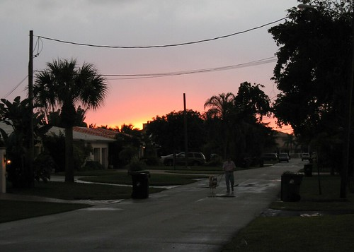 sunset in the 'hood
