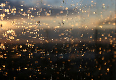 Sunspots (sonofsteppe) Tags: light sunset sunlight inspiration abstract reflection window wet water glass rain dark creativity drops focus hungary dof shine sundown bright budapest dirty spots imagination dreamy abstraction through miksang selective depthless sonofsteppe pusztafia bokef haphazartthroughthewindow adoredlights