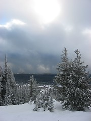 More resort and trees (The Ginja Ninja) Tags: bigwhite