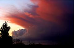 Sunset Sky to the North (algo) Tags: sunset red tree clouds photography topf50 bravo topv1111 north topv999 algo topf100 100f 743 faves5 magicdonkey 50f outstandingshots bej alpha100 1on1sunrisesunsetsphotooftheday abigfave aplusphoto 200750plusfaves irresistiblebeauty superbmasterpiece diamondclassphotographer 1on1sunrisesunsetsphotoofthedayapril2007 flickrclassique