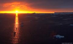 Sunrise in the Weddell Sea, Antarctica (nick_russill) Tags: ocean sea wildlife antarctica seal whale antarctic
