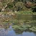 Lake Stewart Photo 8