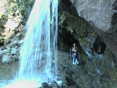 Grotto Falls Smoky Mountains