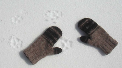 mitts in snow
