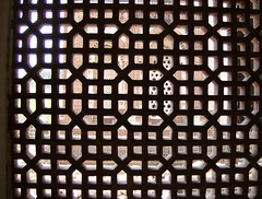 Imam Zamin's tomb at Qutb Minar, Delhi (sftrajan) Tags: india architecture arquitectura delhi tomb screen unescoworldheritagesite architektur unescoworldheritage  architettura architectuur islamic 2007 nct arkitektur islamicarchitecture qutbminar  architektura unescowelterbe patrimoniodelahumanidad  patrimoinemondial     ptszet       dnyamiraslar