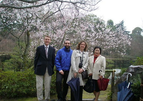 Cherry Blossom at Heian Jingu Shrine Garden
