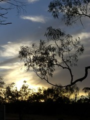 The Only Sunset Photo From The Trip (Pat Scullion) Tags: sunset bush australia outback igawarta headingbush