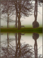 A moment of reflection... (Claudia1967) Tags: morning trees england mist reflection fog still bravo empty foggy benches today soe tranquil imaginarium universitycampus i50 greenandgrey interestingness26 magicdonkey i500 i100 abigfave shieldofexcellence anawesomeshot superbmasterpiece diamondclassphotographer flickrdiamond explore20070327 uniquephotos claudia1967