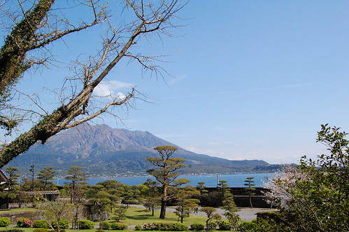 Iso garden Sakurajima 4