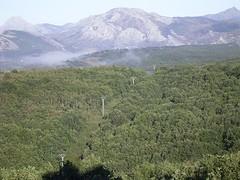 Power line in the woods (DeFerrol) Tags: landscape power line electricity powerline pisuerga cervera ruesga