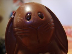 Chocolate bunny - April 12