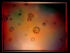 Bubbles world (makunia) Tags: bravo quality xxxxxx xoxo blueribbonwinner supershot magicdonkey outstandingshots abigfave artlibre ultimateshot goldenphotographer goodnightkisses theforceiswiththecroutonso dontforgettobringguitartoparty theprizeisayearsfreesupplyofmagiccroutonso nooooonotredhairedlol pianogoodwellputitonroofrack specialdeliveryitsonitswayo morningmydearfriend