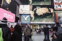 Tal Yarden's 'Counting Sheep' (Times Square NYC) Tags: timessquare timessquarearts tsqarts timessquarealliance midnightmoment midnight timessquareadvertisingcoalition tsac screens billboards publicart videoart film video photographsbykamantsefortsqarts abcsupersign bankofamericatimessquarespectacular brandedcitiesthomsonreuters brandedcitiesnasdaqtower brandedcities7ts 1timessquare cityoutdoor superiordigitaldisplaysthreetimessquare5 vmediatimessquare disneystorespectacular americaneagletimessquare clearchannelspectacolorhd128 clearchannelspectacolorhd127 cemusanewsstands morganstanley microsoftcubeandwelcomecenterlivetiles outfrontmediaviacomnorthsouth silvercastdigitalspectaculartimessquare talyarden sheep countingsheep