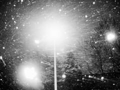 snow orbs