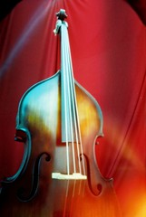 Four strings on my face (bricolage.108) Tags: doublebass musicinstrument