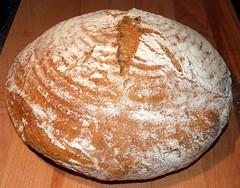 NYT No Knead Bread