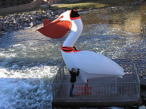 World's Largest Pelican with hat and scarf
