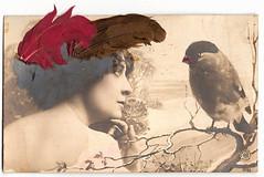 Винтаж Открытка - птичье перо
