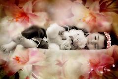 asleep (mylaphotography) Tags: rahi childphotography jaber mylaphotography michiganstudiophotography fairytalephotography