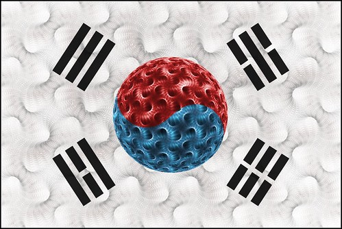Korean  Flag -  Fractal Version