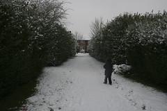 snow-4183 (liltza) Tags: ayres