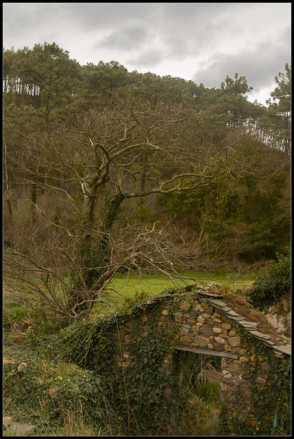 viejo molino de agua by davidgorgojo