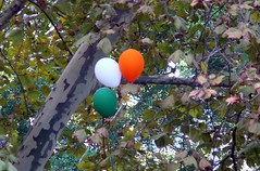 Balloon Tri-Colour
