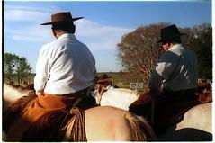 (Robvini) Tags: leica fujifilm cavalos pampa campanha gaúchos uruguaiana iiic peões gaudérios