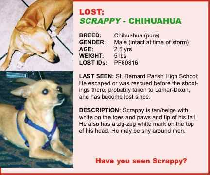 Kinship Circle - 2007-03-17 - 02 - Section 4 - Scrappy