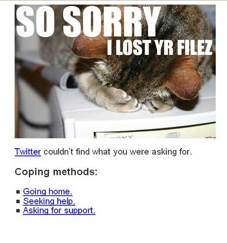 Página de erro do Twitter