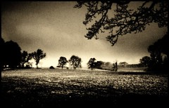 (andrewlee1967) Tags: uk england blackandwhite bw monochrome landscape mono searchthebest cheshire andrewlee canon400d andrewlee1967 andylee1967 focusman5