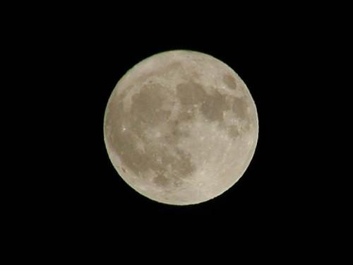 満月(640x480)